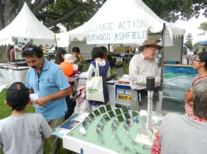 Model solar plant at Climate Action Burwood Ashfield stall